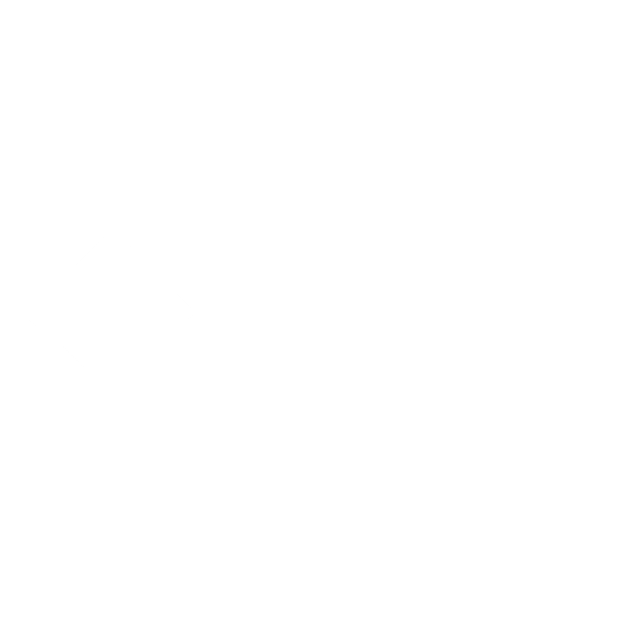 Entertainment Systems Group