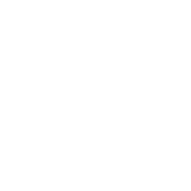 Dr. Julie Hong, D.M.D.
